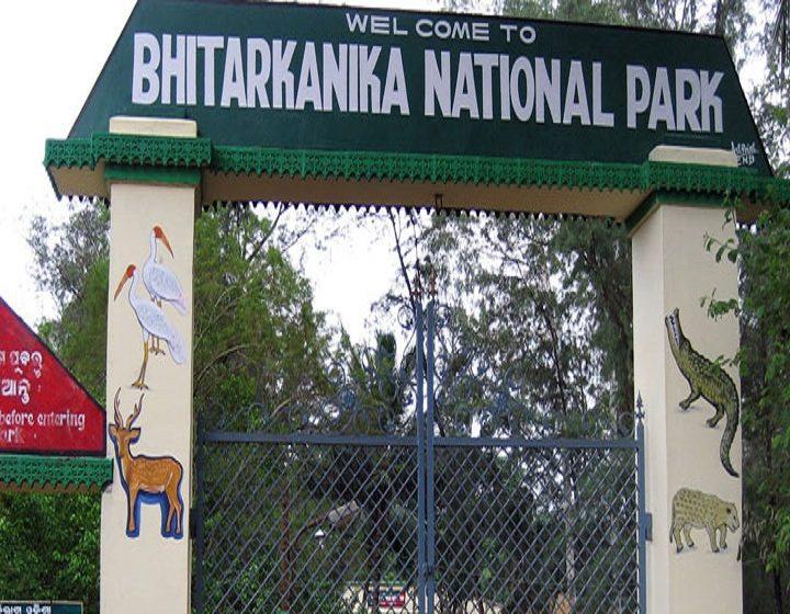 bhitarkanika-national-park-priya-travels