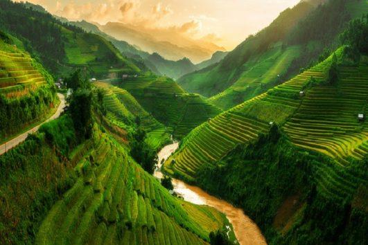 vietnam-reisefelder-in-sapa-priya-travels