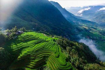 vietnam-sapa-dalat-priya-travels