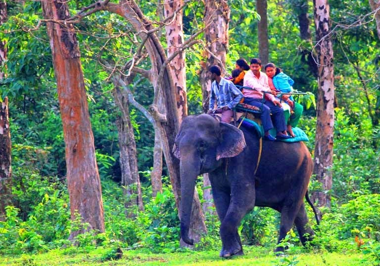 elephant-riding-gorumara-priya-travels
