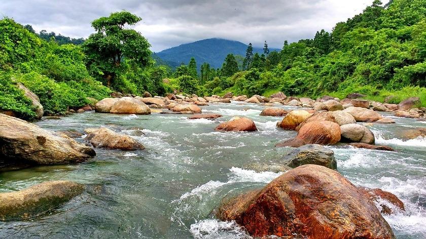samsing-dooars-in-monsoon-priya-travels