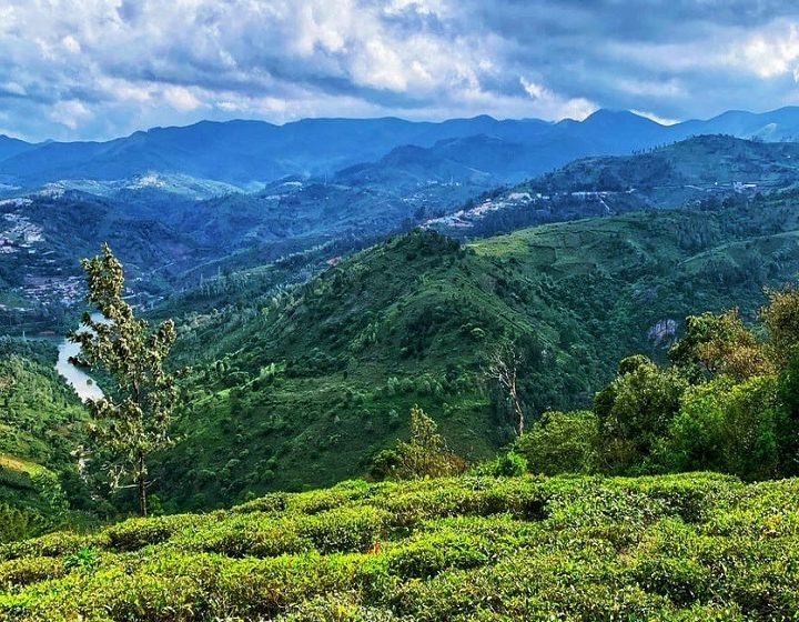 ooty-kodaikanal-tamilnadu-priya-travels